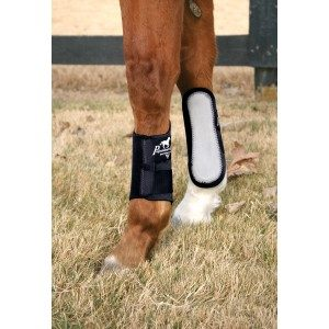 Give Him the Boot! Endurance Horses and Exercise Boots