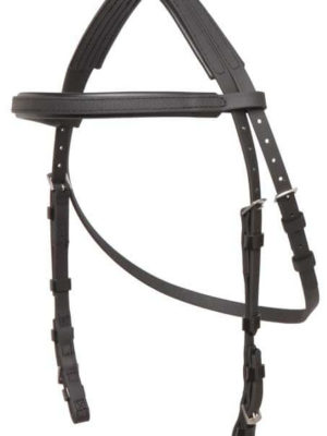 Hackamore Bridle Head