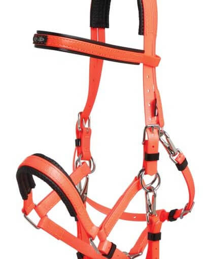 Zilco Marathon bridle with SS fittings