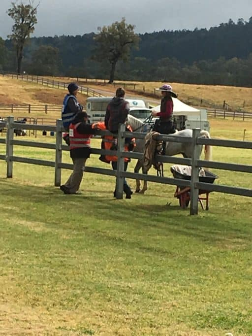 Helmet Brim Equest Endurance