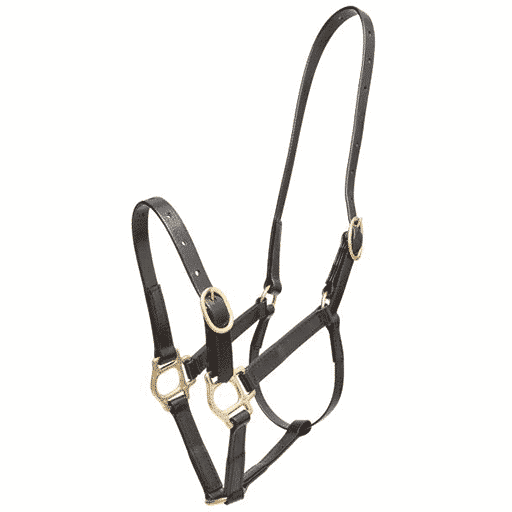 Zilco 19mm PN Headstall