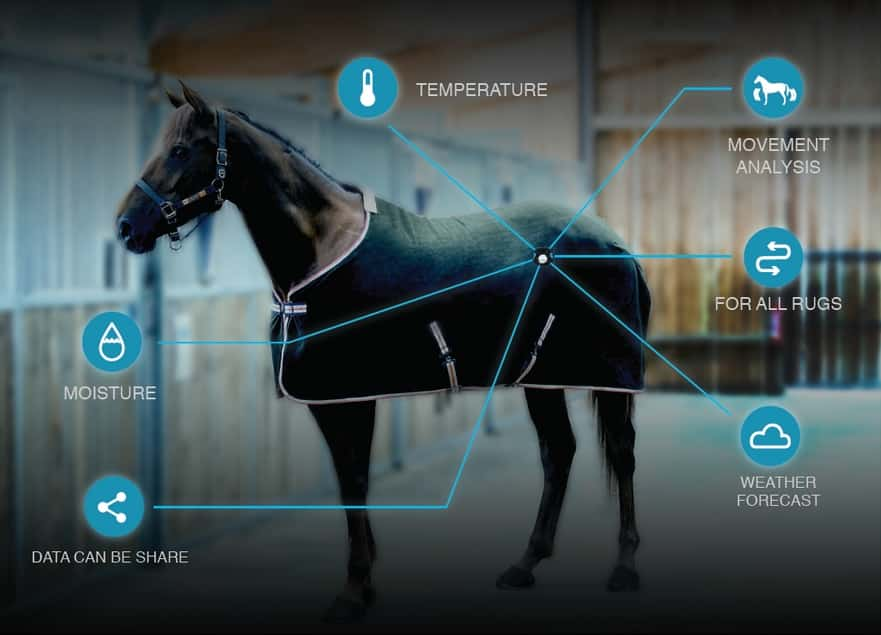 ORSCANA  - DESIGNED TO MONITOR YOUR HORSE AT REST